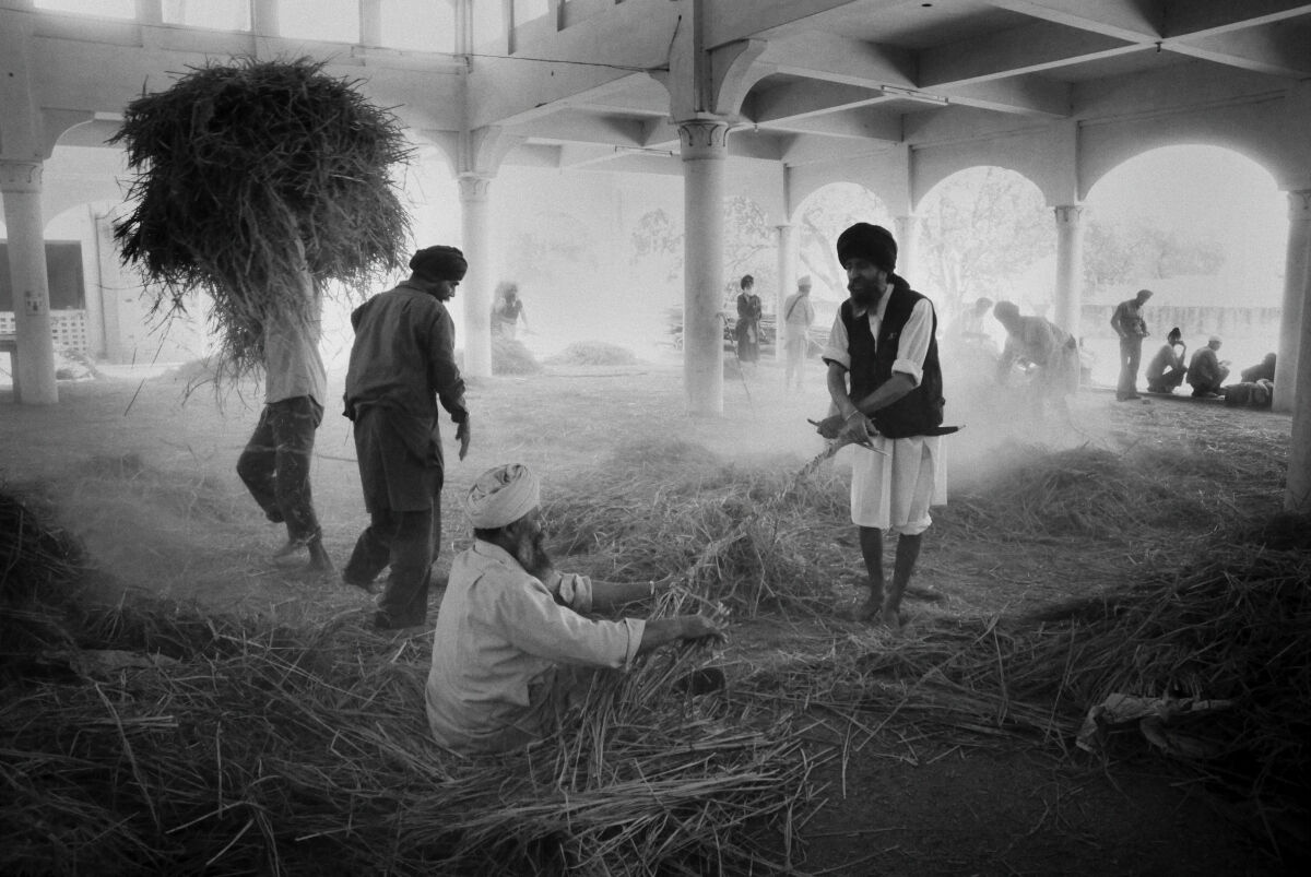 The Rope Makers. Anandpur Sahib. Punjab, India.